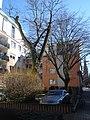 Frankfurt-Bockenheim, Schwälmer Straße, Nachriegsbebauung Ostseite C.JPG