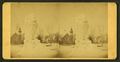 Frozen fountain, from Robert N. Dennis collection of stereoscopic views.png