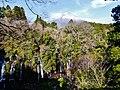 Fujinomiya Shiraito-Wasserfall & Fuji-san 4.jpg