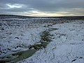 Fylingdales Moor - geograph.org.uk - 113754.jpg