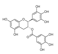 Chemical structure of gallocatechin gallate