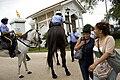 Gentilly Blvd Fairgrounds Mounted Police.jpg
