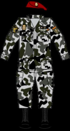 Grupo Especial de Operaciones - Image: Geopolice 2dec