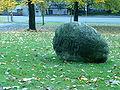 George Brecht - Void Stone 01.JPG