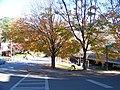 Georgia Tech, Atlanta, GA, USA - panoramio - Idawriter (2).jpg