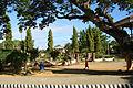 Getafe Bohol 1.jpg
