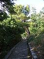 Gjirokastra - holprig gepflasterter Fußweg.jpg