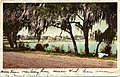 Glimpse of Lake Eola (NBY 6368).jpg