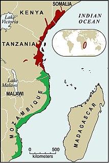 Southern Zanzibar-Inhambane coastal forest mosaic