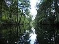 Gmina Borne Sulinowo, Poland - panoramio (6).jpg