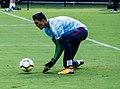 Goalkeeper Arijanet Muric (36243874430-cropped).jpg