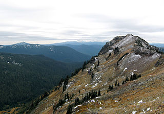 Goat Rocks Wilderness Protected area