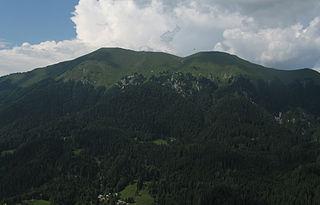 Golica