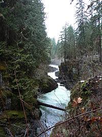 Gorge of Stamp Falls in Stamp River Provincial Park in December.JPG