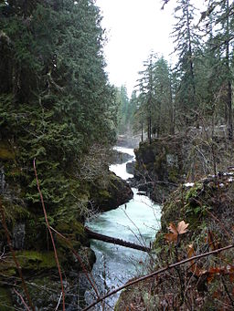 Gorge of Stamp Falls in Stamp River Provincial Park in December.JPG