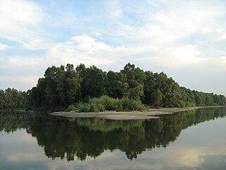 Gornje Podunavlje Protected wetland area in the northwest of Serbia