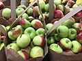 Green apples 1 2017-10-23.jpg
