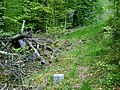 Grenzstein am Wanderweg - panoramio (1).jpg