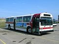 Guelph Transit 141.jpeg