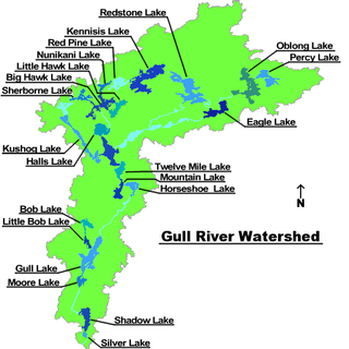 Gull River (Balsam Lake) river in Haliburton County, Ontario, Canada