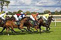 HDR Style Horse Racing Photo (8054841494).jpg
