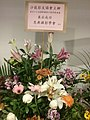 HKCL CWB 香港中央圖書館 Hong Kong Central Library 展覽廳 Exhibition Gallery 國際攝影沙龍展 PSEA flowers sign Oct 2016 SSG 04.jpg