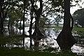 Habarana Lake.jpg