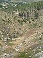 Hadassah Trail P1150462.JPG