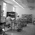 Hadassah universitair medisch centrum Ruimte waarin de voorraadadministratie is, Bestanddeelnr 255-4924.jpg
