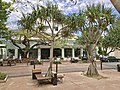 Hastings Street, Noosa Heads, Queensland 03.jpg