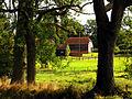 Hatch House Farm - geograph.org.uk - 62448.jpg