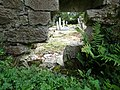 Headstones, Coole Upper Two Churces, North Cork..JPG