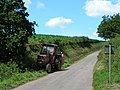Hedge trimming - geograph.org.uk - 1393434.jpg