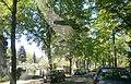 Hermsdorf-AuguteViktoriaStraße-P5150381 (2).JPG