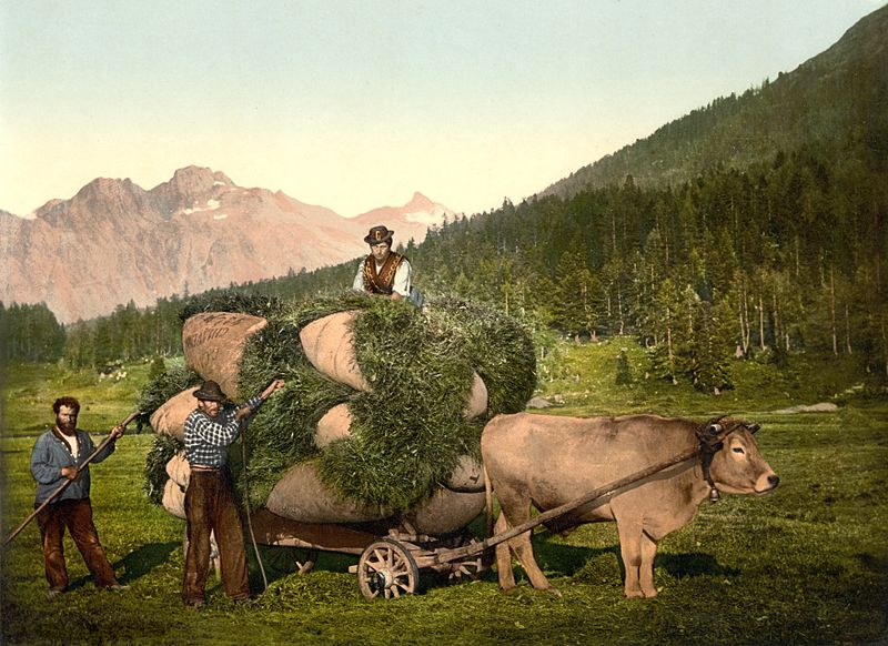 File heufuhr im engadin um wikimedia commons for Ohrensessel um 1900