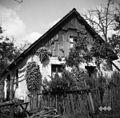 Hiša - običajna, novejša, Sv. Vrh 1951.jpg