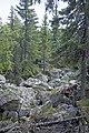 Hiking to Malinovaya (21229321081).jpg