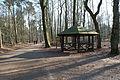 Hildener Heide 2016 310.jpg