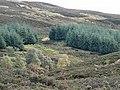 Hillside - geograph.org.uk - 62943.jpg