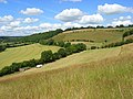 Hillside below Bledlow Ridge - geograph.org.uk - 892159.jpg
