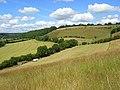 Hillside below Bledlow Ridge - geograph.org.uk - 892159.jpg