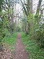 Holloway Lane - geograph.org.uk - 158647.jpg