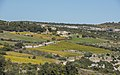 House and vineyards, Minerve cf01.jpg