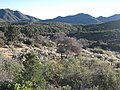 Hualapai Mountains (12890299345).jpg