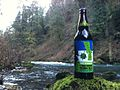 Hub Cascadia Secession Dark Ale bottle perched on a mossy rock near flowing water.jpg