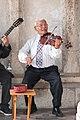 Hungarian violinist (16434424727).jpg