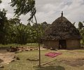 Hut (5065610553).jpg