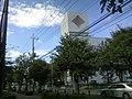 INOKASHIRA Rd. - panoramio.jpg