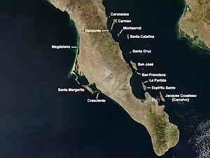 Jacques Cousteau Island - Image: Iles de Basse Californie Sud
