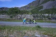 Im hohen Norden mit dem Rad, Andy.jpg